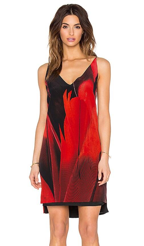OSKLEN Feather Silk Dress in Red & Black