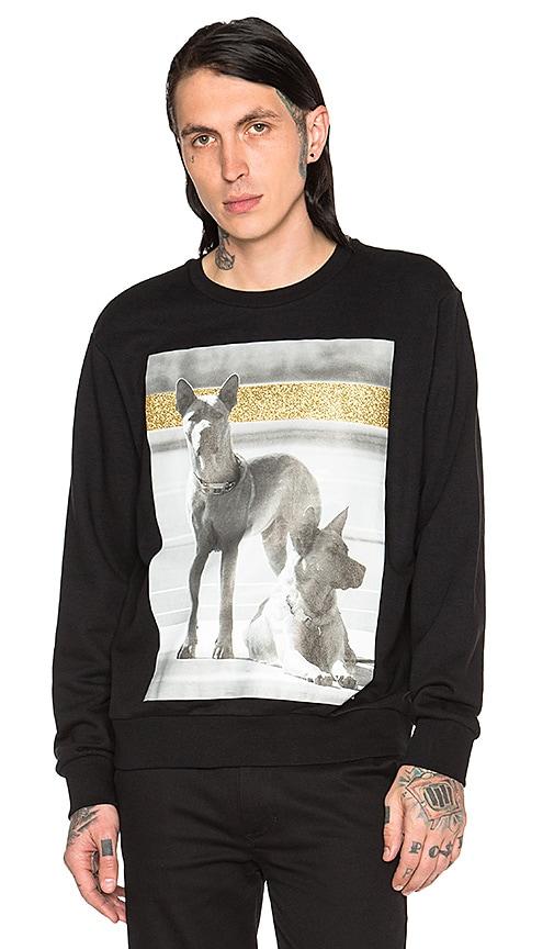 Palm Angels Dogs Crewneck Sweatshirt in Black Multicolor