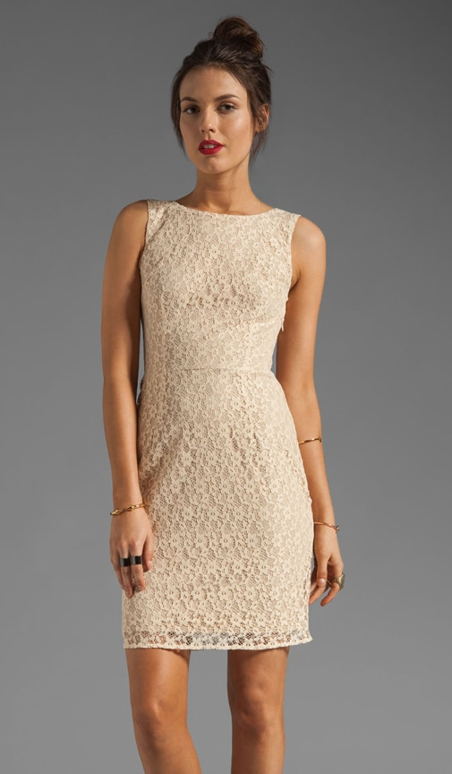 Dartmouth Lace Dress