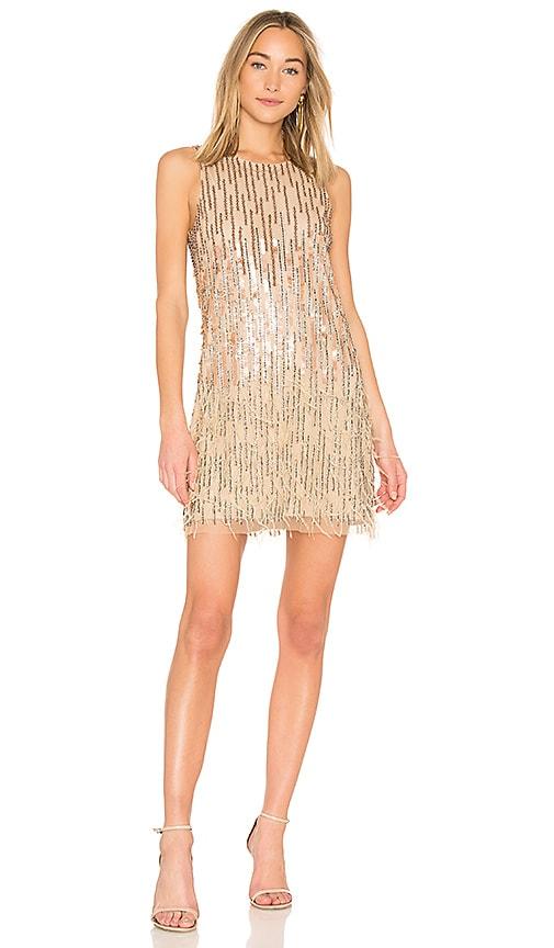 Parker Black Allegra Dress in Metallic Neutral