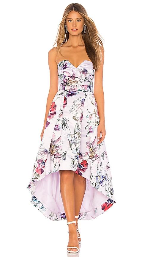 7dc29fbe86a Parker Black Clemson Dress in Roseline Watercolor