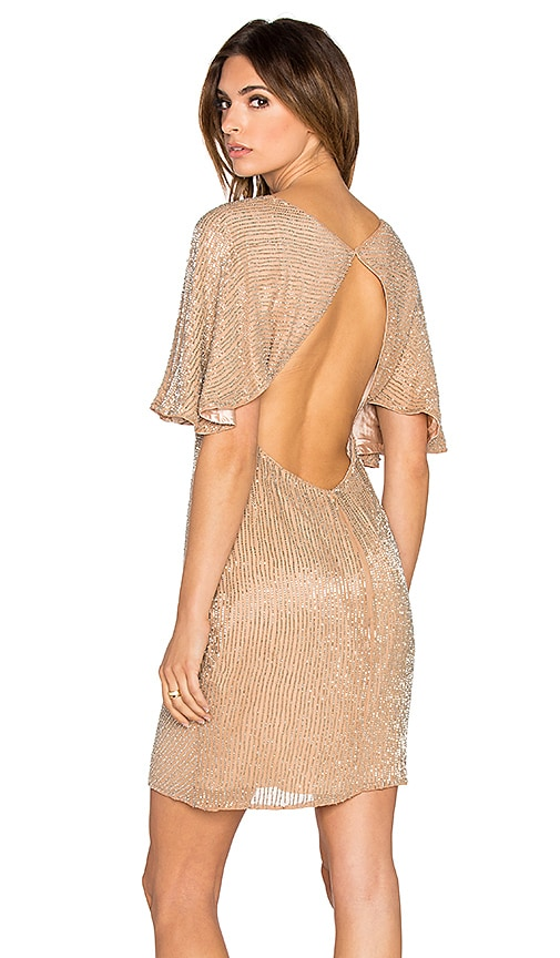 Parker Black Fiona Embellished Dress in Blush