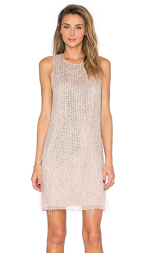 Parker Black Allegra Embellished Dress in Blush
