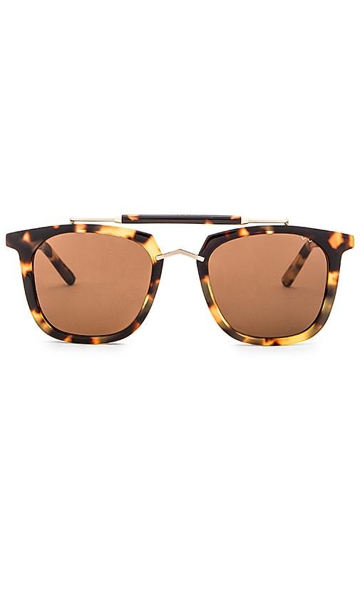 Camels & Caravans Sunglasses
