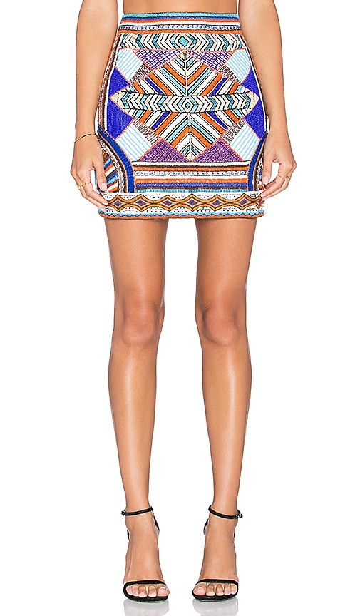 Pia Pauro Embroidered Mini Skirt in Multi
