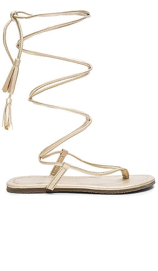 PILYQ Gladiator Sandals in Metallic Gold