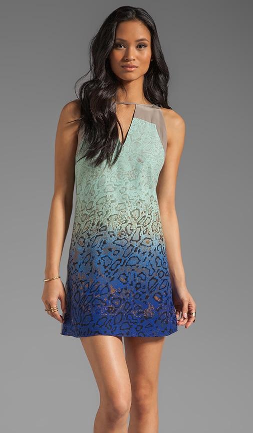 Snake Color Block Dress