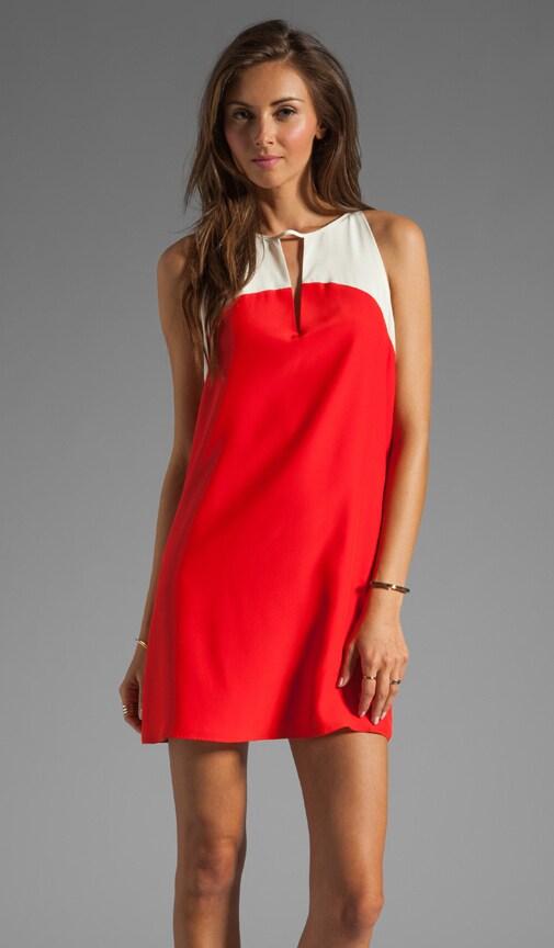 Zoe Color Block Dress