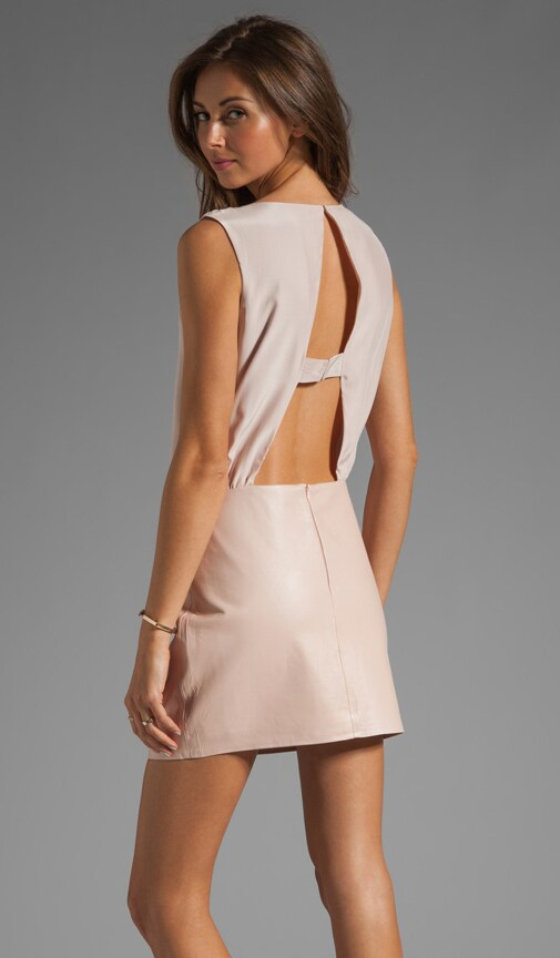 Grace Leather Skirt Dress