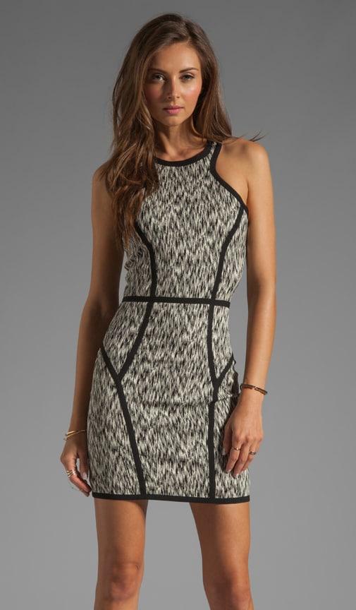 Palms Dress