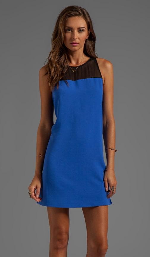 Pipsy Sheer Dress
