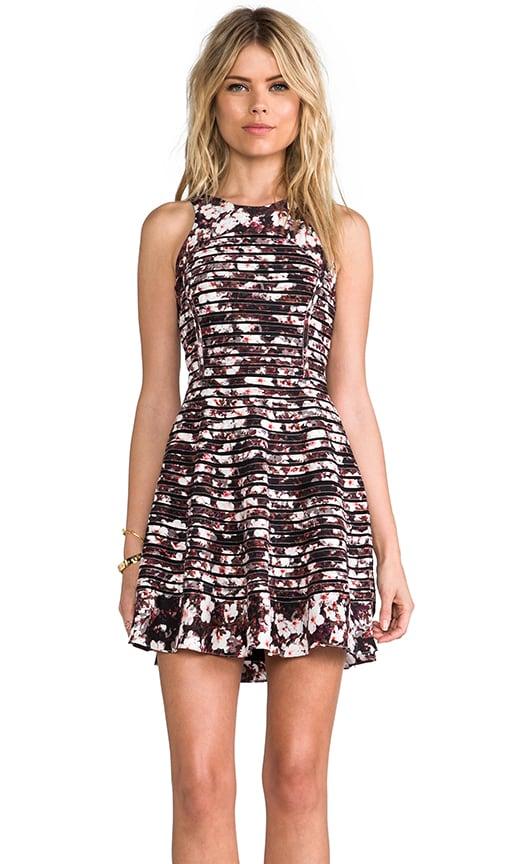 Evony Dress