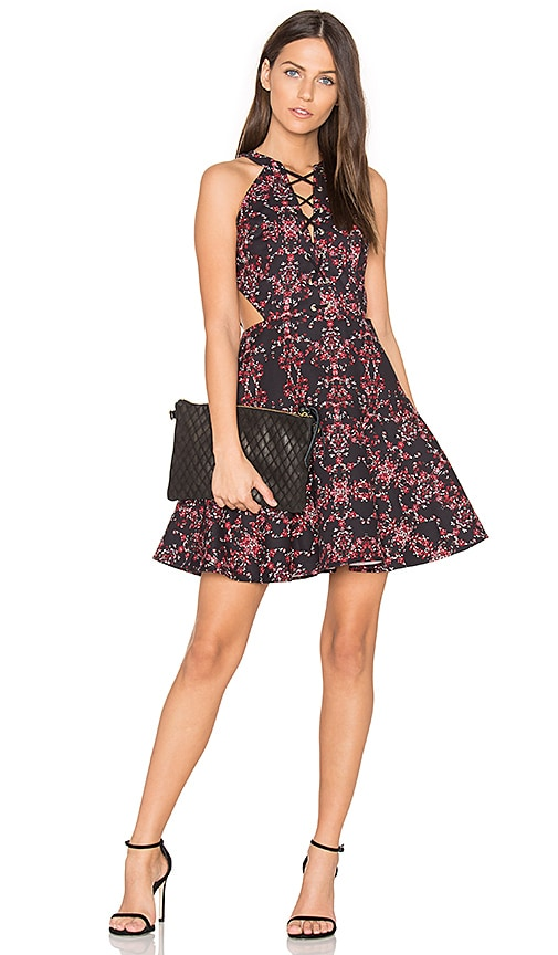 Parker Rayan Dress in Black