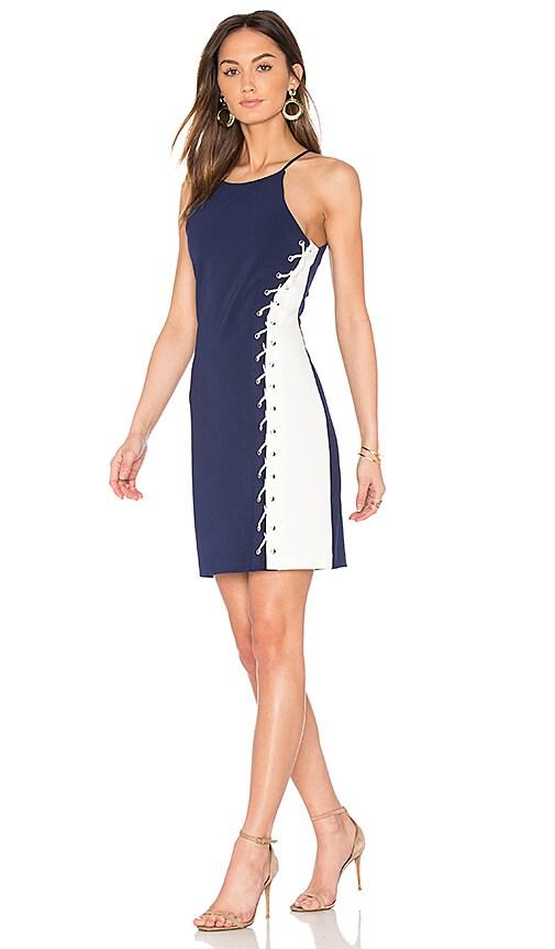 Parker Florence Dress in Blue