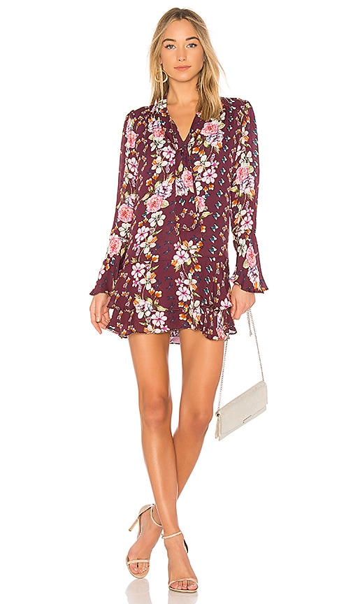 Parker Cathryn Floral Dress in Wine