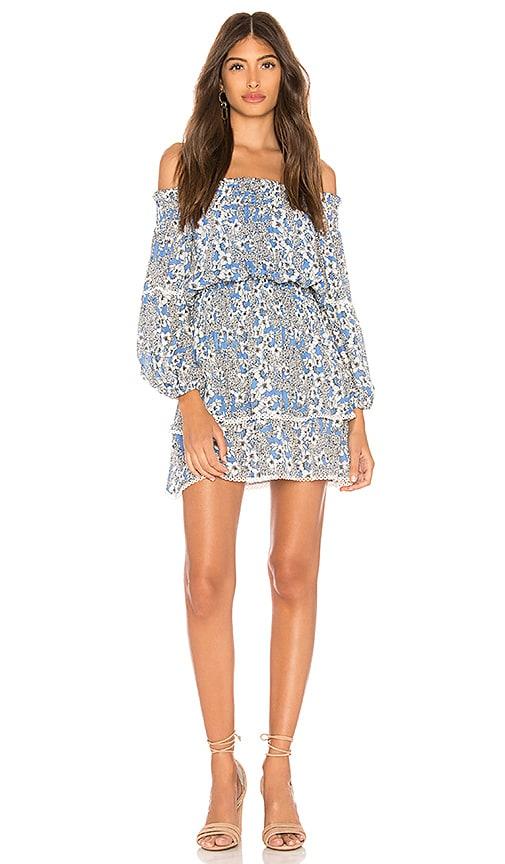 Parker Kara Dress in Blue