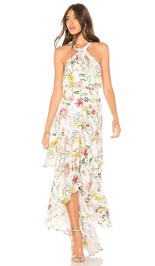Parker Fillipa Dress in White