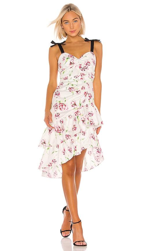 Panama Combo Dress