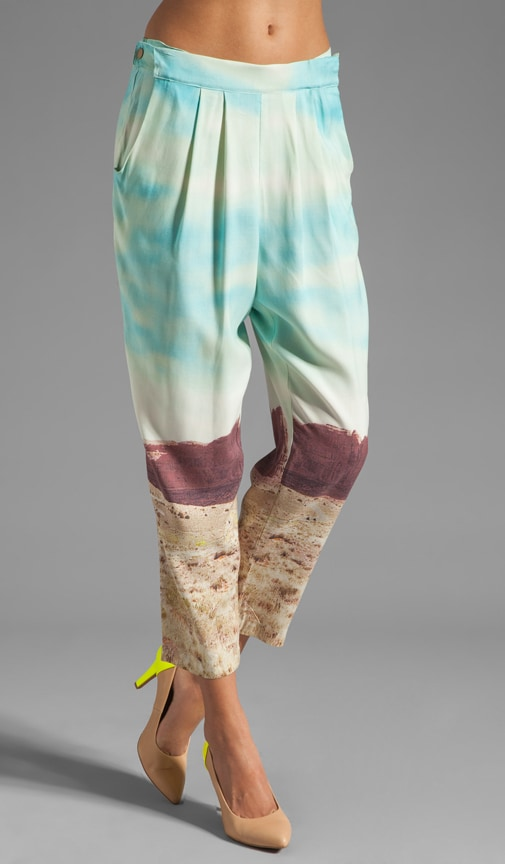 Photo Realistic Silk Prints Cropped Convertible Pant