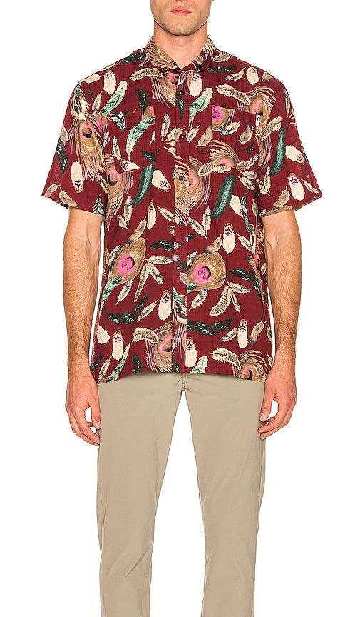 Tad Button Up Shirt