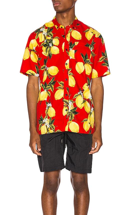 Ezar Button Up Shirt