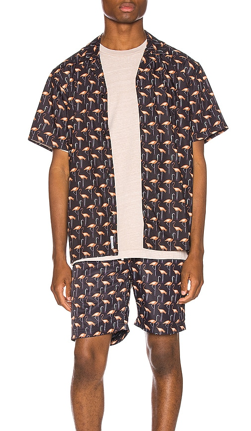 Jame Button Up