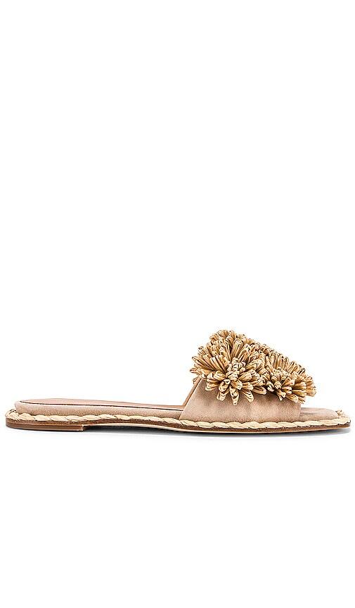 Urma Sandal