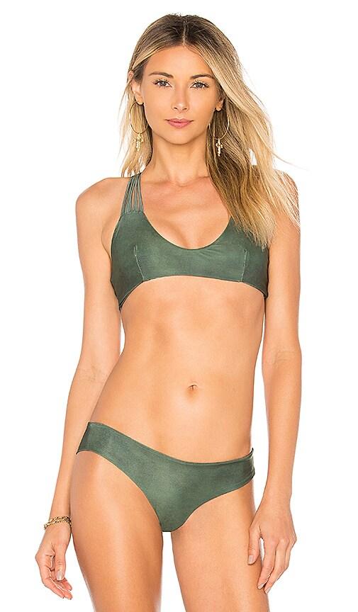 POEMA Swim Samoa Bikini Top in Dark Green