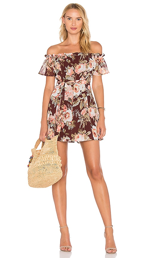Privacy Please Deluth Dress in Brown