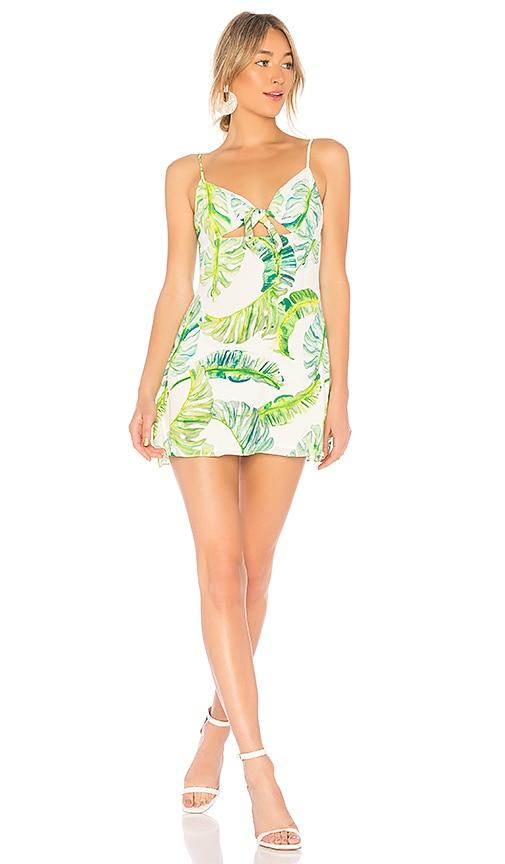 Privacy Please Cabana Mini Dress in Green