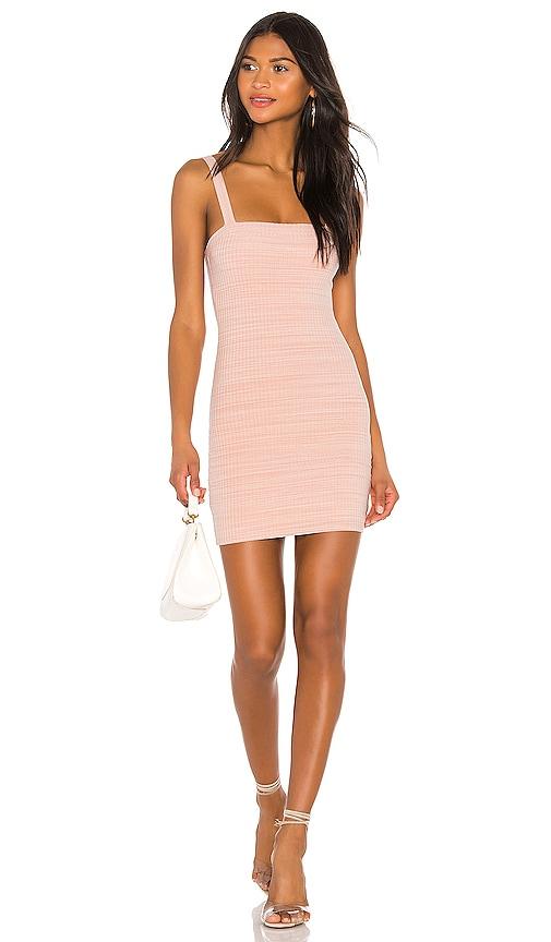 Bradian Mini Dress