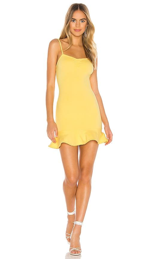 Oakwood Mini Dress
