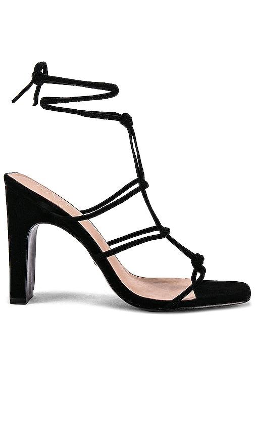 Havoc Heel