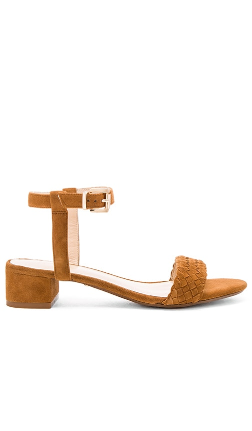 RAYE Ava Sandal in Whiskey