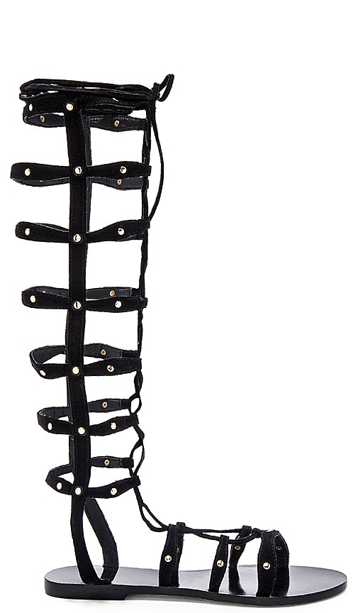 RAYE Shanna Gladiator Sandal in Black