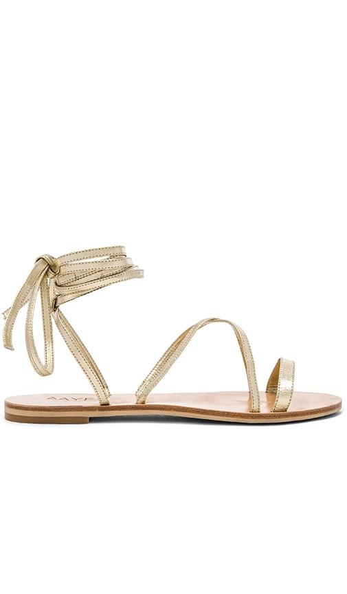 RAYE Sadie Gladiator Sandal in Gold