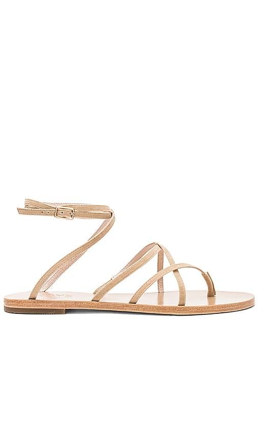 Coy Sandal