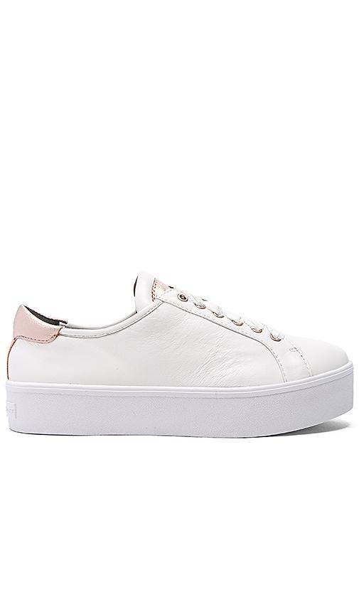Saxon Sneaker