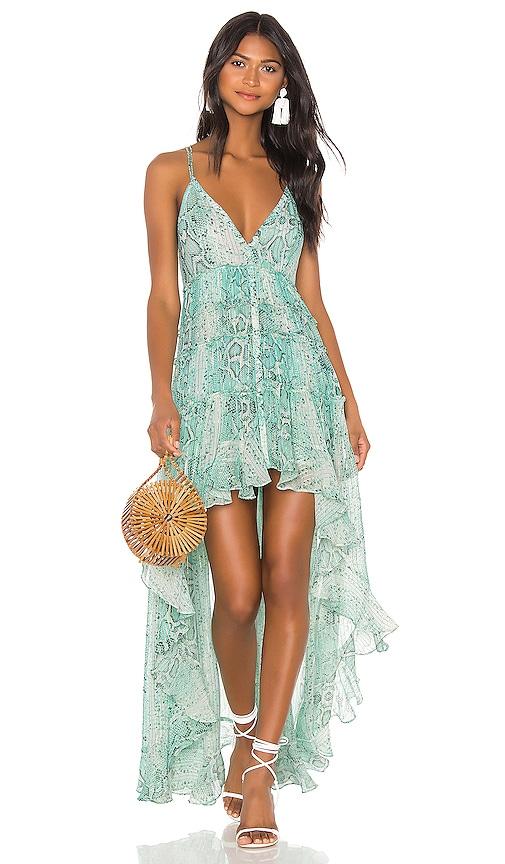 x REVOLVE Lexi Maxi Dress