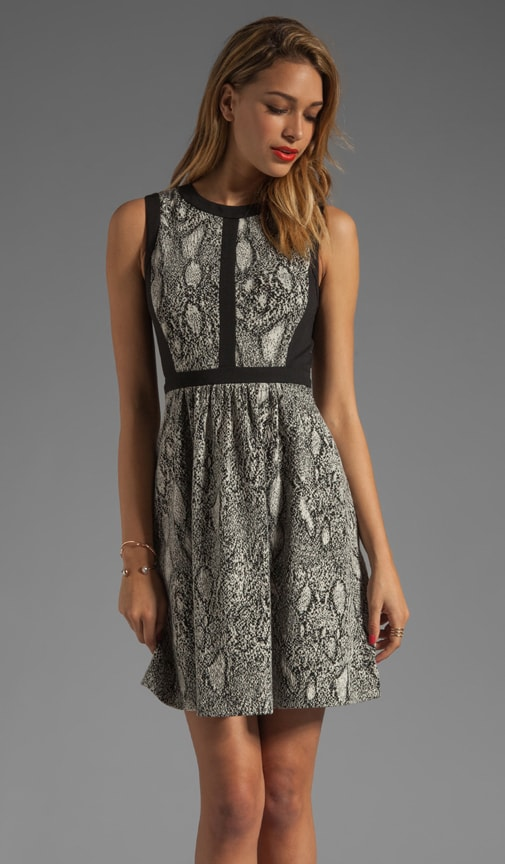 Python Fit & Flare Dress