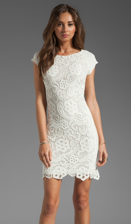 All Lace Dress