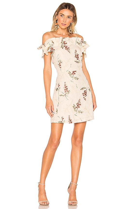 Ivie Embroidered Dress
