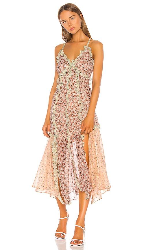 Lucia Tank Dress