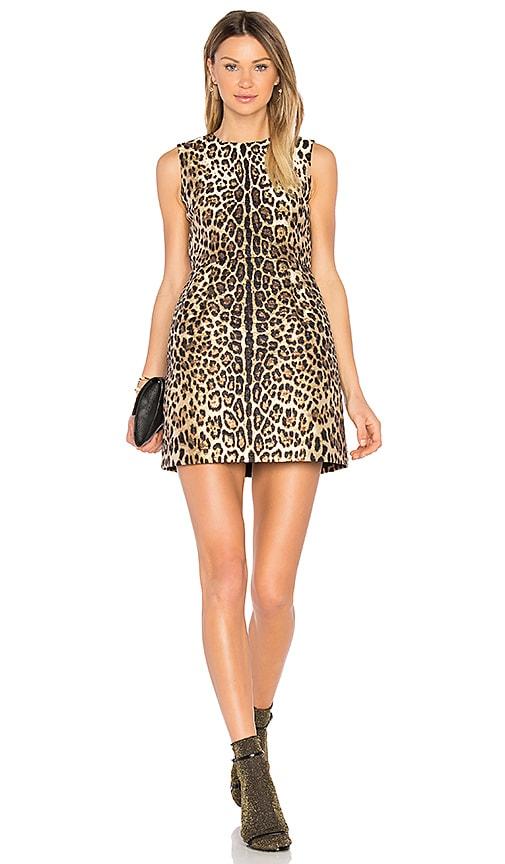 6bdf14e790a8bc Red Valentino Sleeveless Dress in Nero Leopard Print