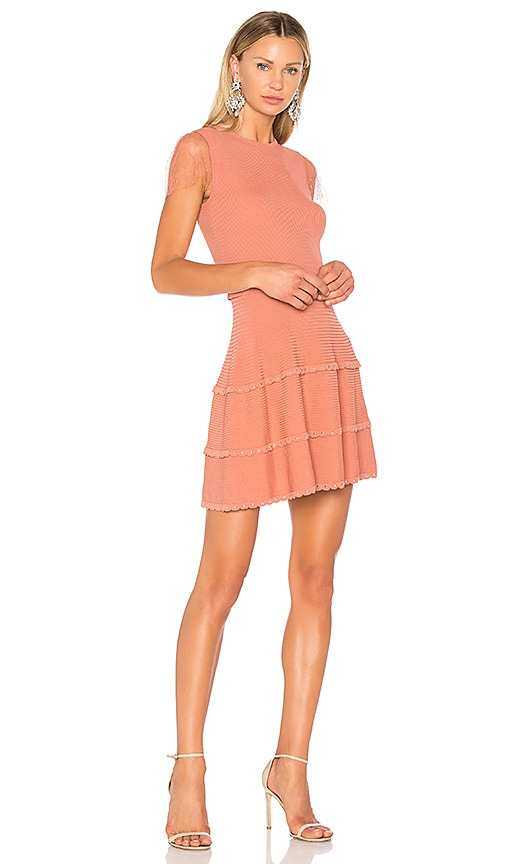 Red Valentino Fit & Flare Mini Dress in Rose