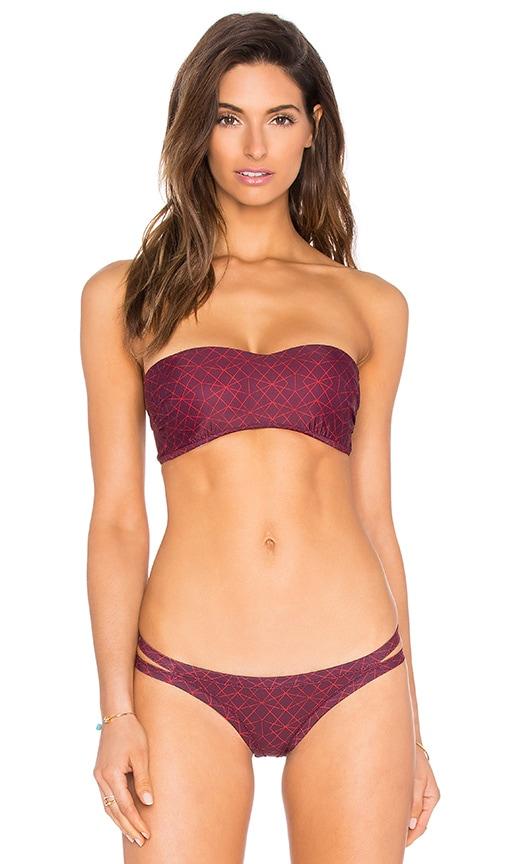 Palm Bandeau Bikini Top