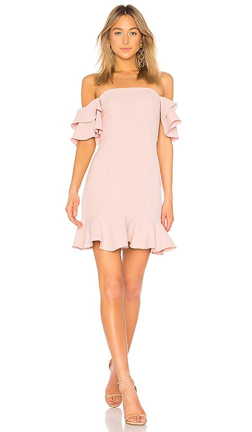RACHEL ZOE Tracy Dress in Rose