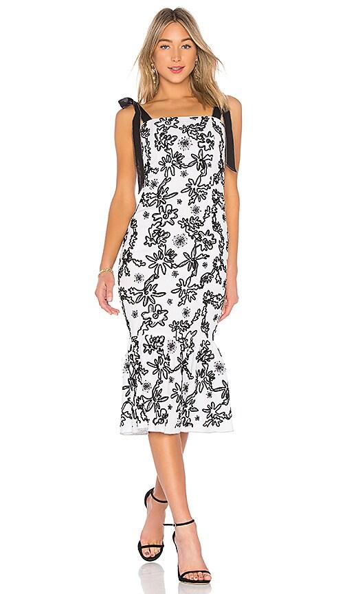 RACHEL ZOE Lily Dress in Black & White