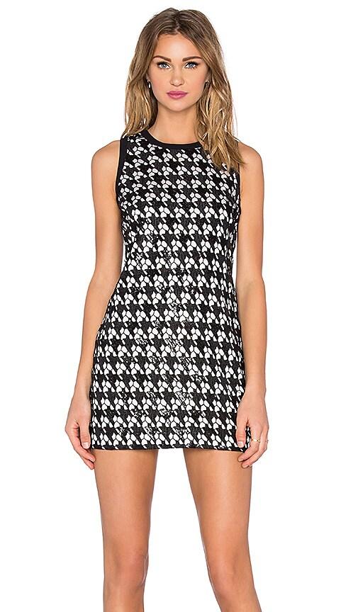 RACHEL ZOE Zadie Dress in Black & White