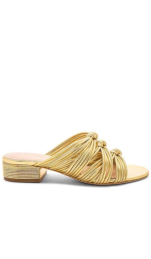 RACHEL ZOE Wren Sandal in Metallic Gold